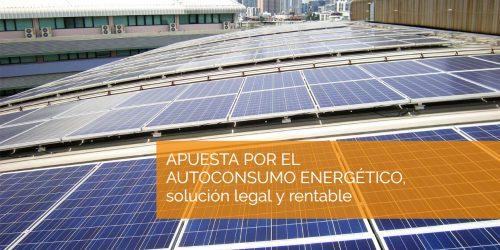 La CNMC emite su informe sobre la propuesta de Real Decreto que regula el autoconsumo de energía eléctrica