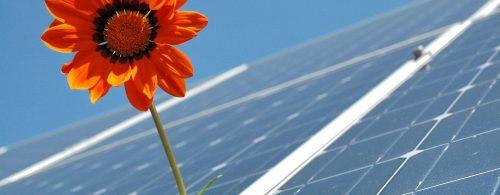 ¿Subvenciones al autoconsumo solar fotovoltaico? Olvídate. No las necesitas